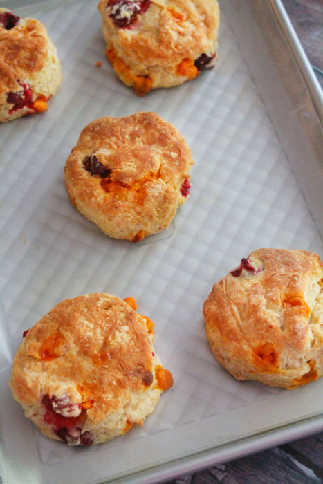 Pumpkin Spice Cranberry Scones from BluebonnetBaker.com