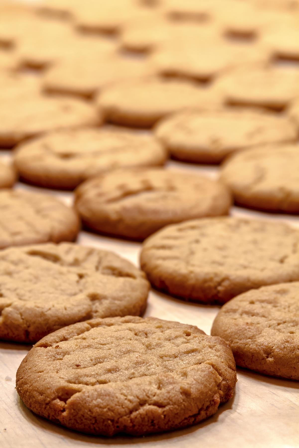 Maple Peanut Butter Cookies on BluebonnetBaker